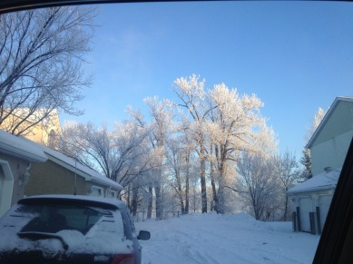 Snow - 2