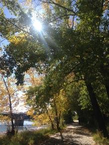 autumn-17