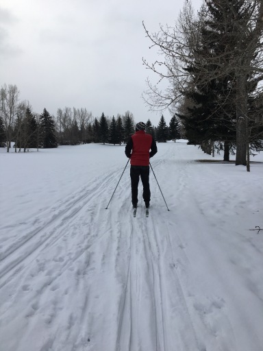 skiing-5-1